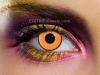 pumpkin-eye